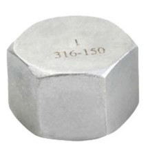 NPT threaded hex cap fitting available in SS316 and SS304.